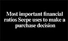 Video - The most important financial ratios Seepe uses to make a purchase decision